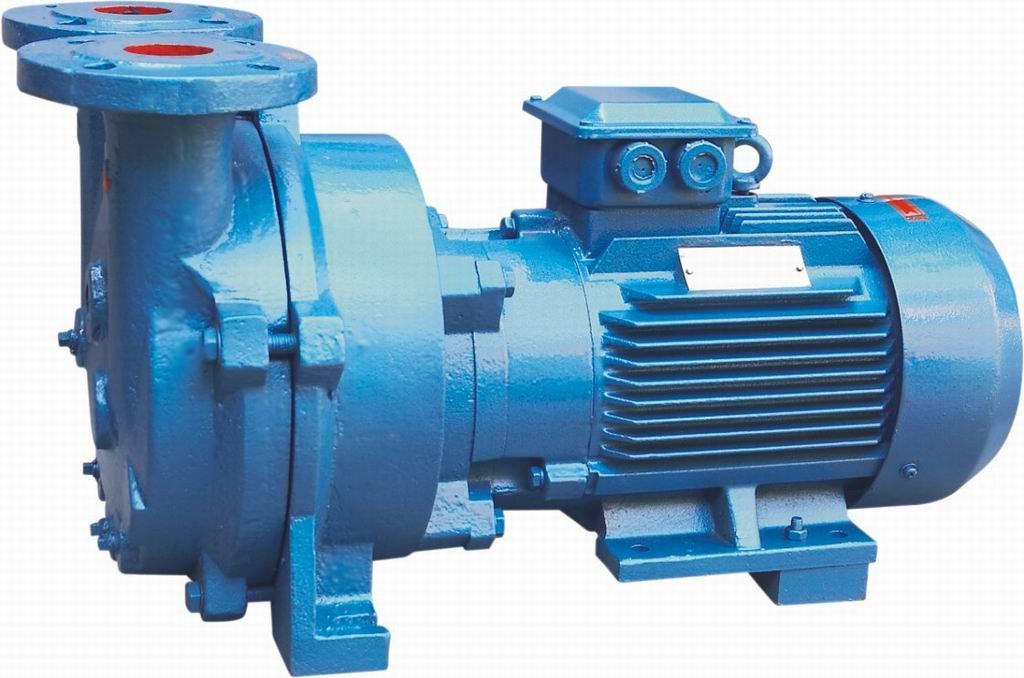 Rotary water pump